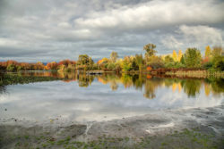 Trout Lake in autumn, Vancouver, BC, Canada